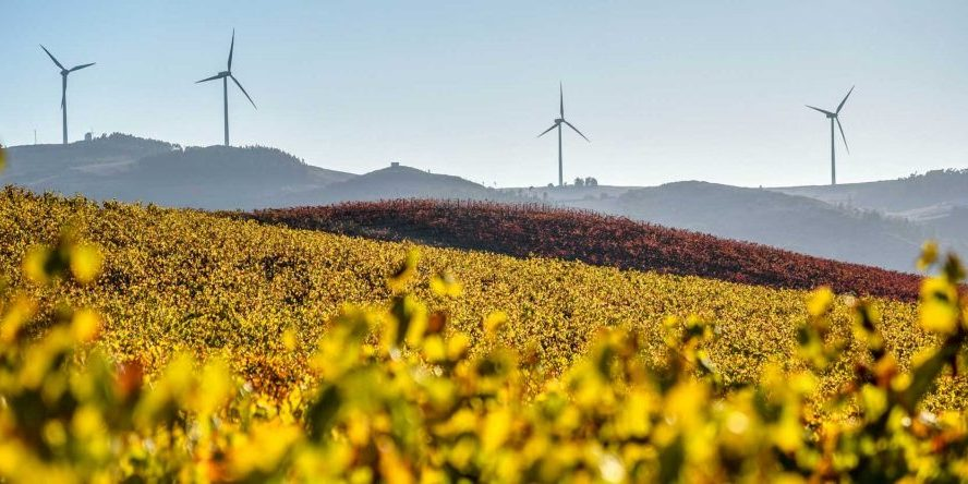 Portugal wine tourism, gastronomy, landscapes and wonderful roads in any season
