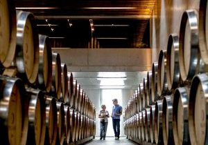 Visit-wine-cellars-Portugal Vintage Tours